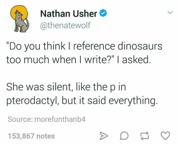 """Text - Nathan Usher @thenatewolf """"Do you think I reference dinosaurs too much when I write?"""" I asked. She was silent, like the p in pterodactyl, but it said everything. Source: morefunthanb4 153,867 notes A"""