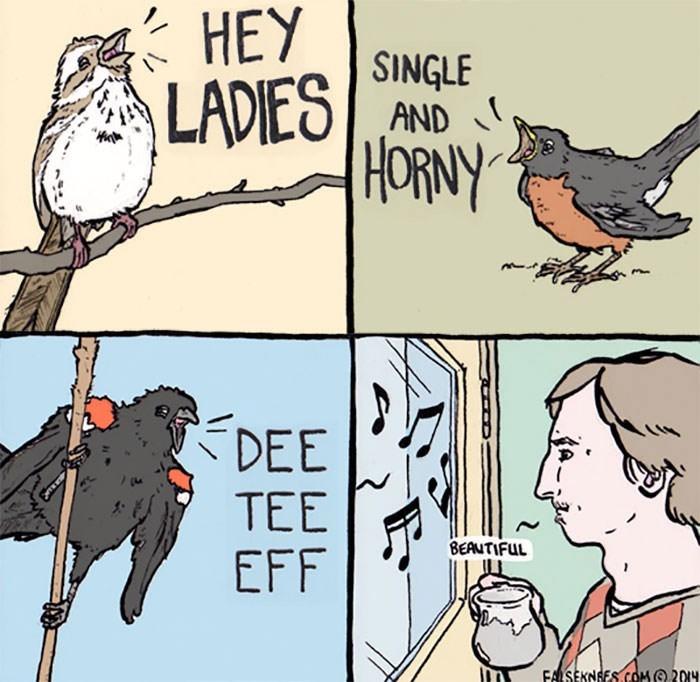 Bird - HEY LADIES/SNGLE AND LADIES HORNY DEE TEE BEAUTIFUL EFF FALSEKNGES.COM@ 201