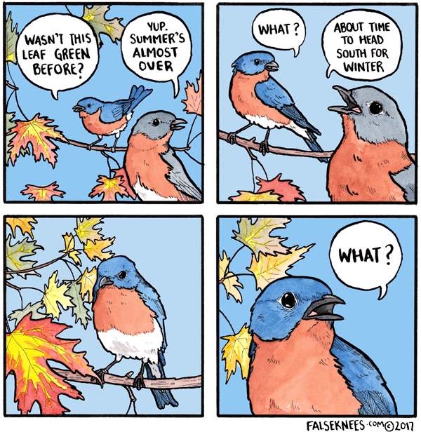 Comics - YUP. SUMMER'S ALMOST OVER WHAT? ABOUT TIME TO HEAD SOUTH FOR WINTER WASN'T THIS LEAF GREEN BEFORE? th WHAT? LA FALSEKNEES COMO2017