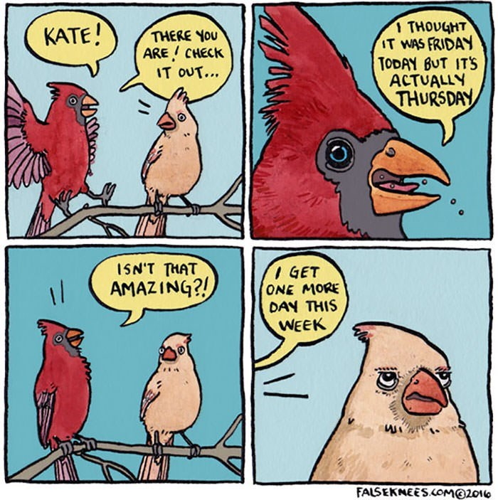Bird - KATE! THOUGHT IT WAS FRIDAY TODAY BUT ITS ACTUALLY THURSDAY THERE YOu ARE CHECK IT OUT... 1SN'T THAT GET ONE MORE DAN THIS AMAZING?! I/ WEEK FALSEKNEES.cOMO2010