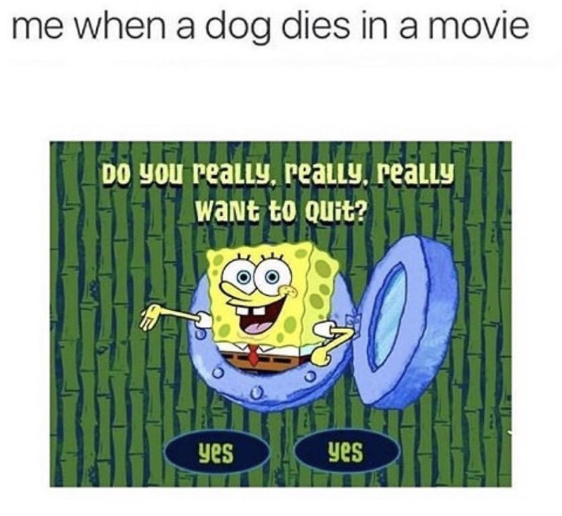 Funny meme about when dogs die in movies.