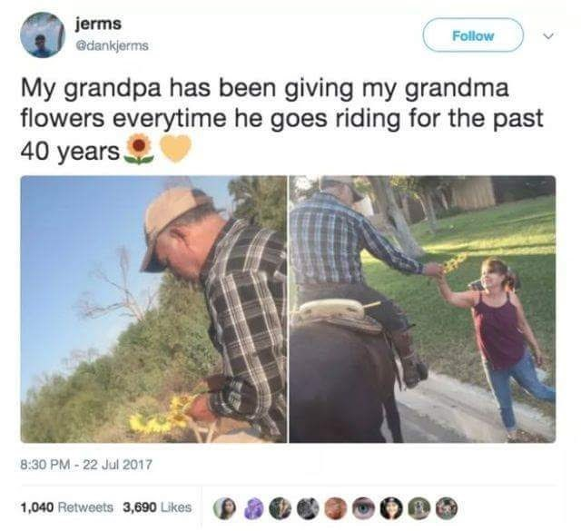 Text - jerms @dankjerms Follow My grandpa has been giving my grandma flowers everytime he goes riding for the past 40 years 8:30 PM-22 Jul 2017 1,040 Retweets 3,690 Likes