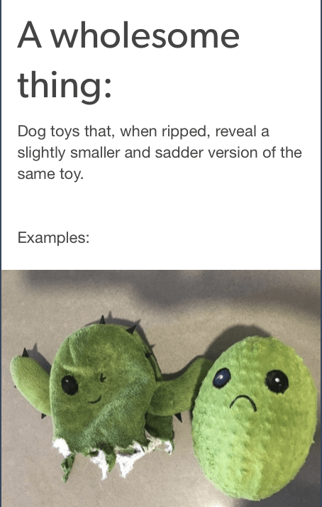 Organism - A wholesome thing: Dog toys that, when ripped, reveal a slightly smaller and sadder version of the same toy. Examples: