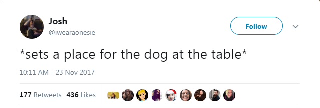 Text - Josh Follow @iwearaonesie sets a place for the dog at the table* 10:11 AM - 23 Nov 2017 177 Retweets 436 Likes