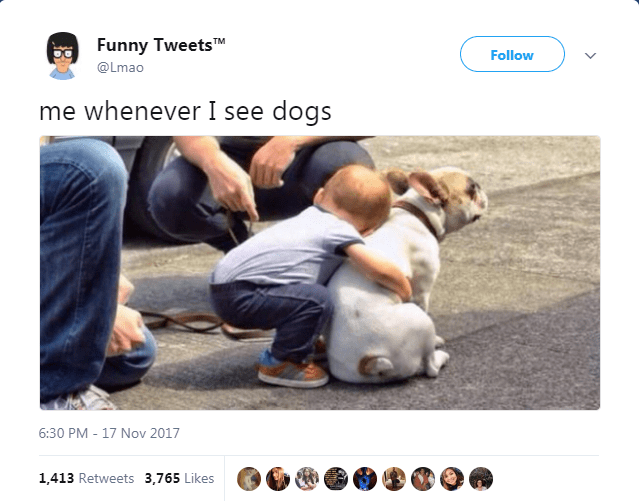 Photo caption - Funny TweetsTM Follow @Lmao me whenever I see dogs 6:30 PM - 17 Nov 2017 1,413 Retweets 3,765 Likes