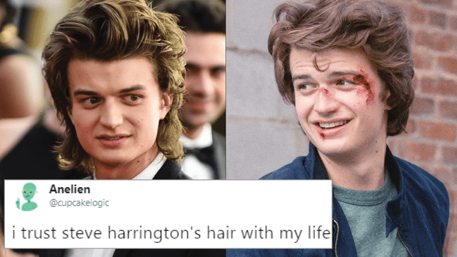 Hair - Anelien @cupcakelogic i trust steve harrington's hair with my life