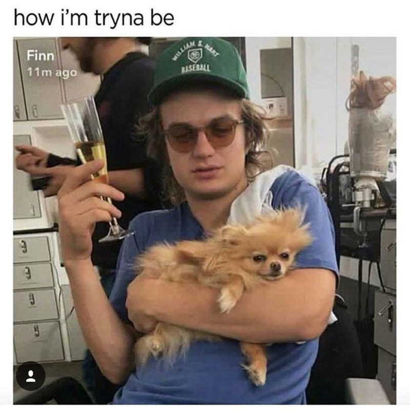 Pomeranian - how i'm tryna be WLLIAM BASEBALL SHART Finn 11m ago