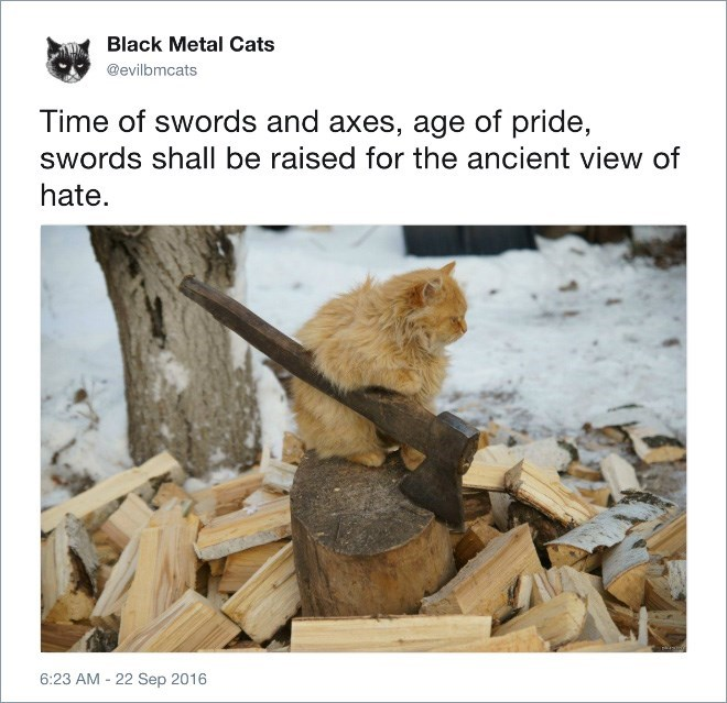 Adaptation - Black Metal Cats @evilbmcats Time of swords and axes, age of pride, swords shall be raised for the ancient view of hate. 6:23 AM 22 Sep 2016