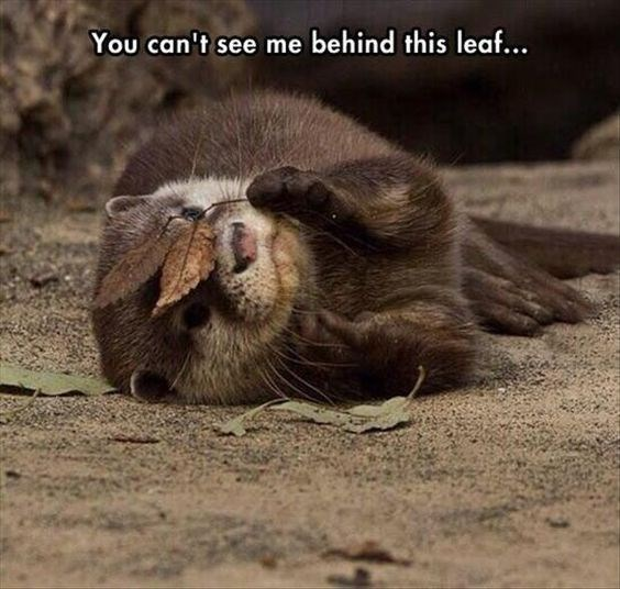 Facial expression - You can't see me behind this leaf...