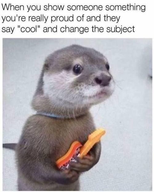 """Otter - When you show someone something you're really proud of and they say """"cool"""" and change the subject"""