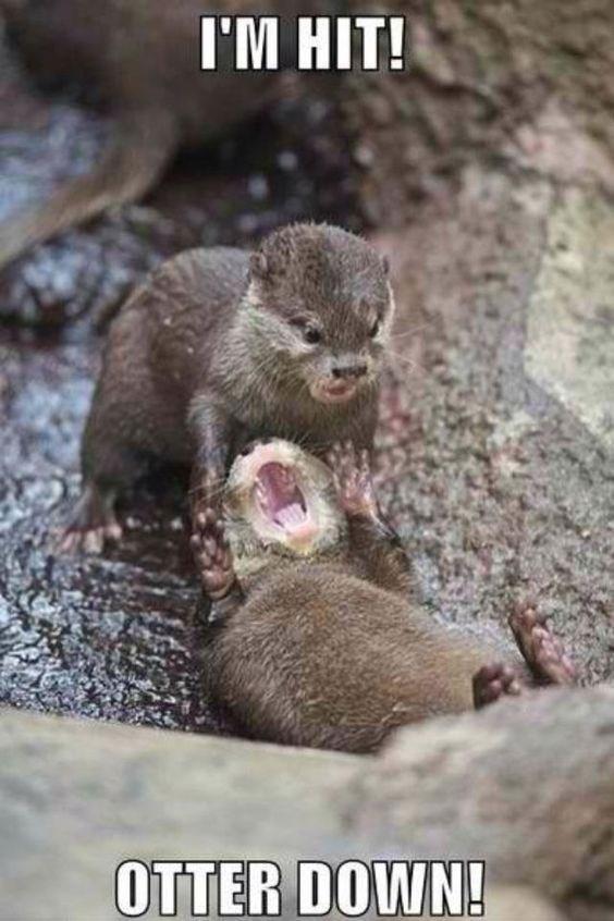 Mink - I'M HIT! OTTER DOWN!