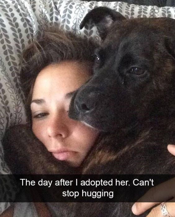 Canidae - The day after I adopted her. Can't stop hugging