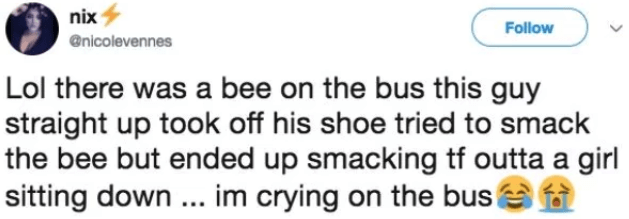 Text - nix Follow @nicolevennes Lol there was a bee on the bus this guy straight up took off his shoe tried to smack the bee but ended up smacking tf outta a girl sitting down... im crying on the bus!