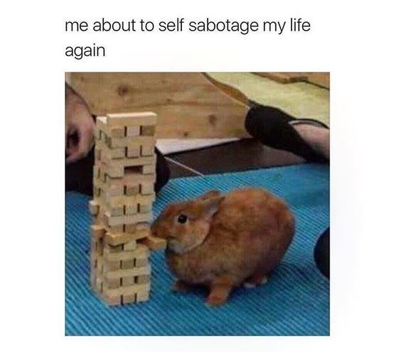 meme - Organism - me about to self sabotage my life again