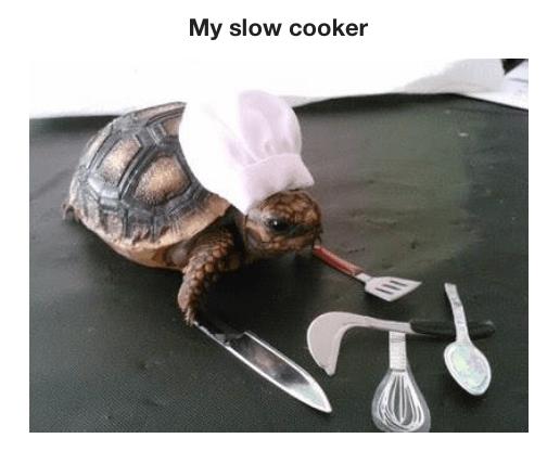 Tortoise - My slow cooker