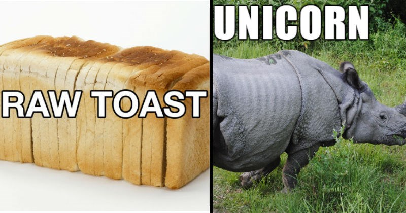 Funny alternate names for objects and animals.