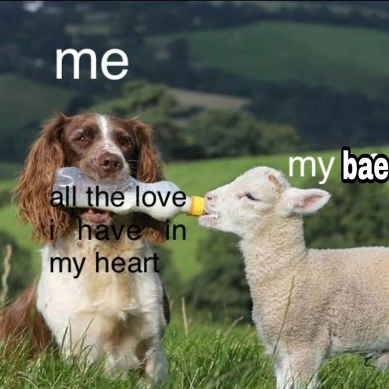 17 Romantic Memes You Should Send To Your Crush Memebase Funny Memes