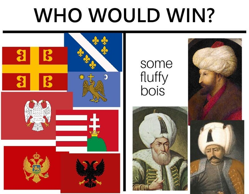 WHO WOULD WIN? some fluffy bois