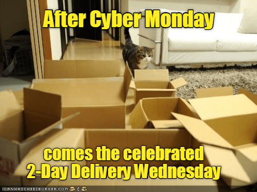 cat meme - Yellow - After Cyber Monday comes the celebrated 2-Day Delivery Wednesday ICANHASCHEEZBURGERcoM