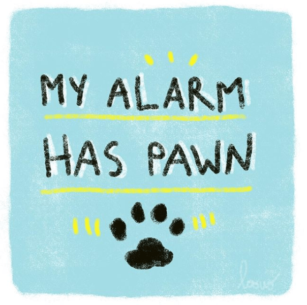 Canidae - MY ALARM HAS PAWN