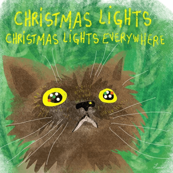 Cat - CHRISTMAS LIGHTS CHRISTMAS LIGHTS EVERYWIERE