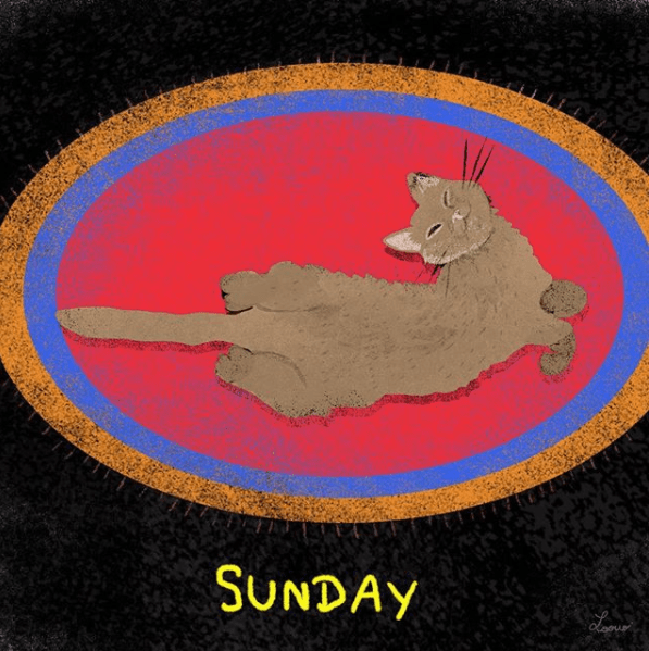 Cat - SUNDAY