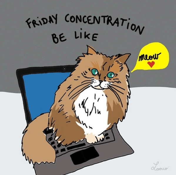Cat - FRIDAY CONCENTRATION BE LIKE Muew