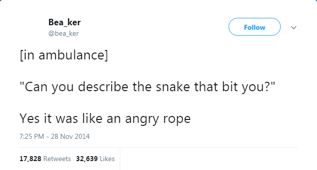 """Text - Bea_ker Follow @bea_ker [in ambulance] """"Can you describe the snake that bit you?"""" Yes it was like an angry rope 7:25 PM - 28 Nov 2014 17,828 Retweets 32,639 Likes"""
