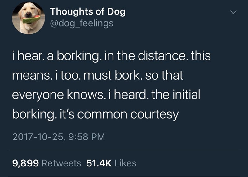 Text - Thoughts of Dog @dog_feelings i hear. a borking. in the distance. this means.i too. must bork. so that everyone knows.i heard. the initial borking. it's common courtesy 2017-10-25, 9:58 PM 9,899 Retweets 51.4K Likes
