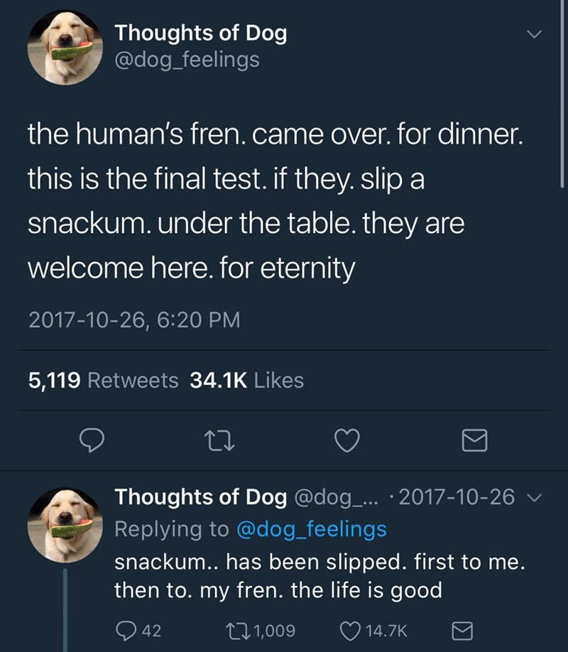 Text - Thoughts of Dog @dog_feelings the human's fren. came over. for dinner. this is the final test. if they. slip a snackum.under the table. they are welcome here. for eternity 2017-10-26, 6:20 PM 5,119 Retweets 34.1K Likes Thoughts of Dog @dog_.. 2017-10-26 Replying to @dog_feelings snackum.. has been slipped. first to me. then to. my fren. the life is good L2.1,009 42 14.7K
