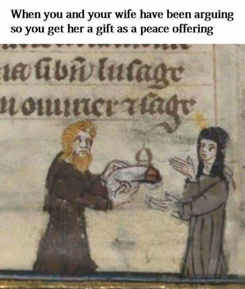 meme - Text - When you and your wife have been arguing so you get her a gift as a peace offering nomncrtadr IL1umion