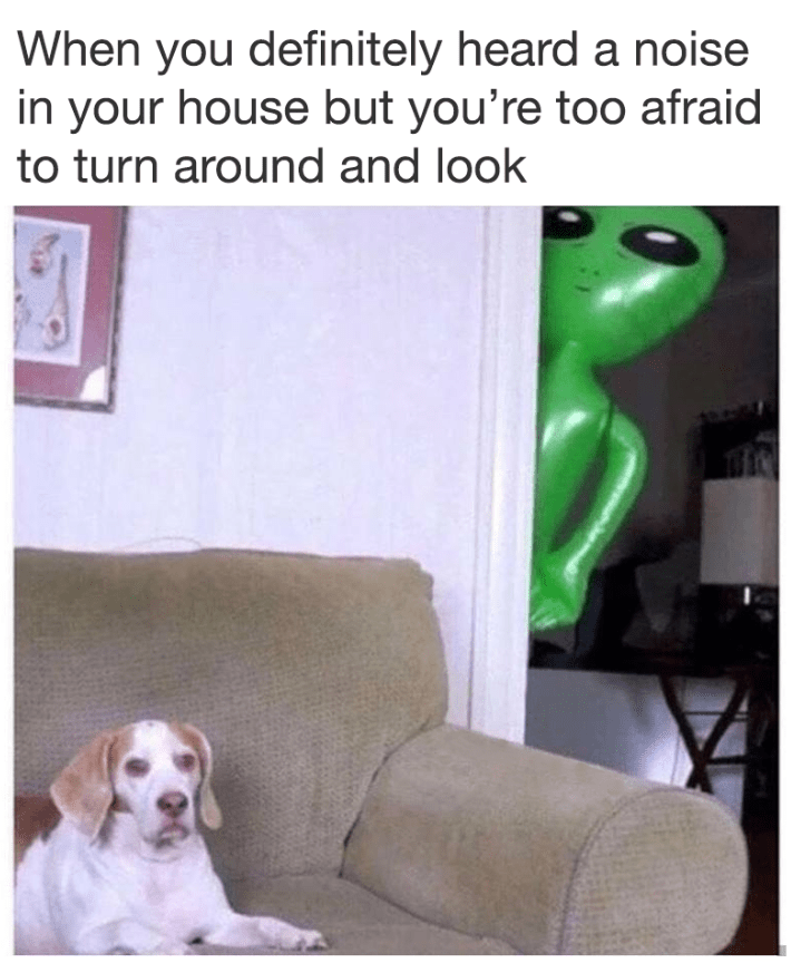 Funny meme about being scared to turn around, alien and dog.