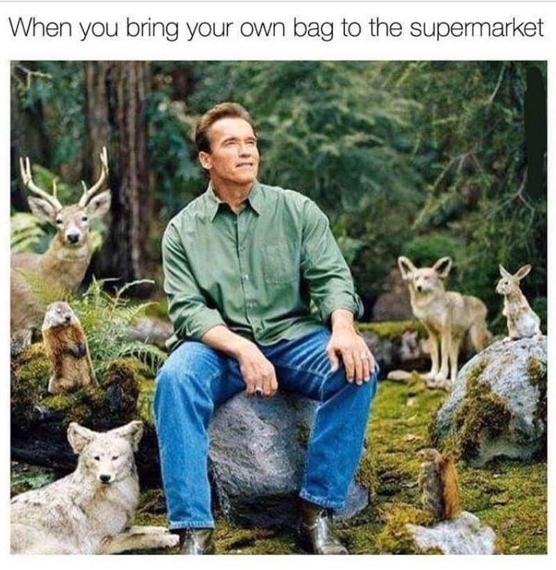 Funny meme about when you bring your own bag to a grocery store.