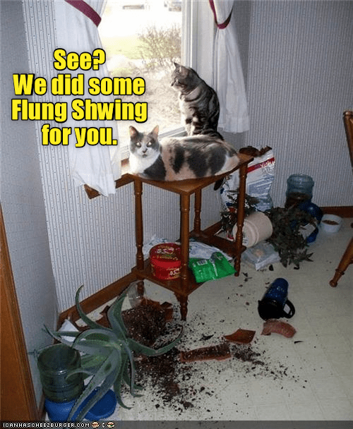 Home Decorating Yes It S That Easy Lolcats Lol Cat Memes