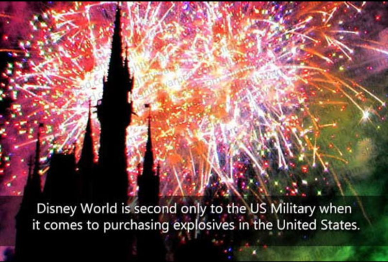 Fireworks - neowarpea Disney World is second only to the US Military when it comes to purchasing explosives in the United States.