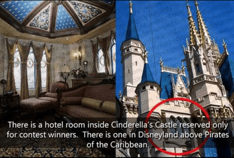 Architecture - ghtyaed.co ghtyparmed.com ghttywarped.com gtywwarhed com hlywarped.co f/tywarped omghwarper CO There is a hotel room inside Cinderella's Castle reserved only for contest winners. There is one in Disneyland above Pirates Com of the Caribbean