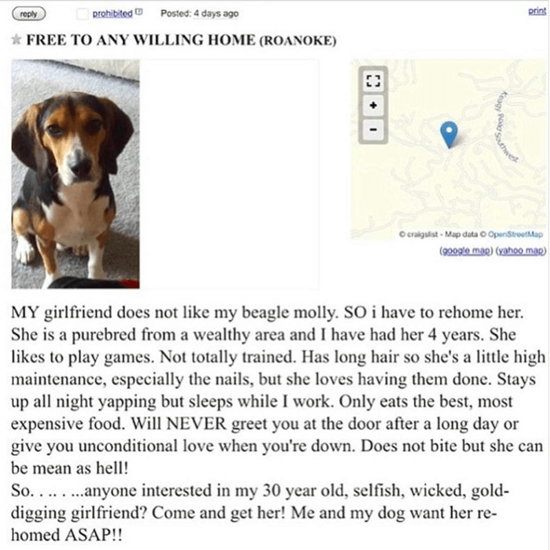 Funny meme about guy giving away his girlfriend because he loves his dog and she hates his dog, craigslist.