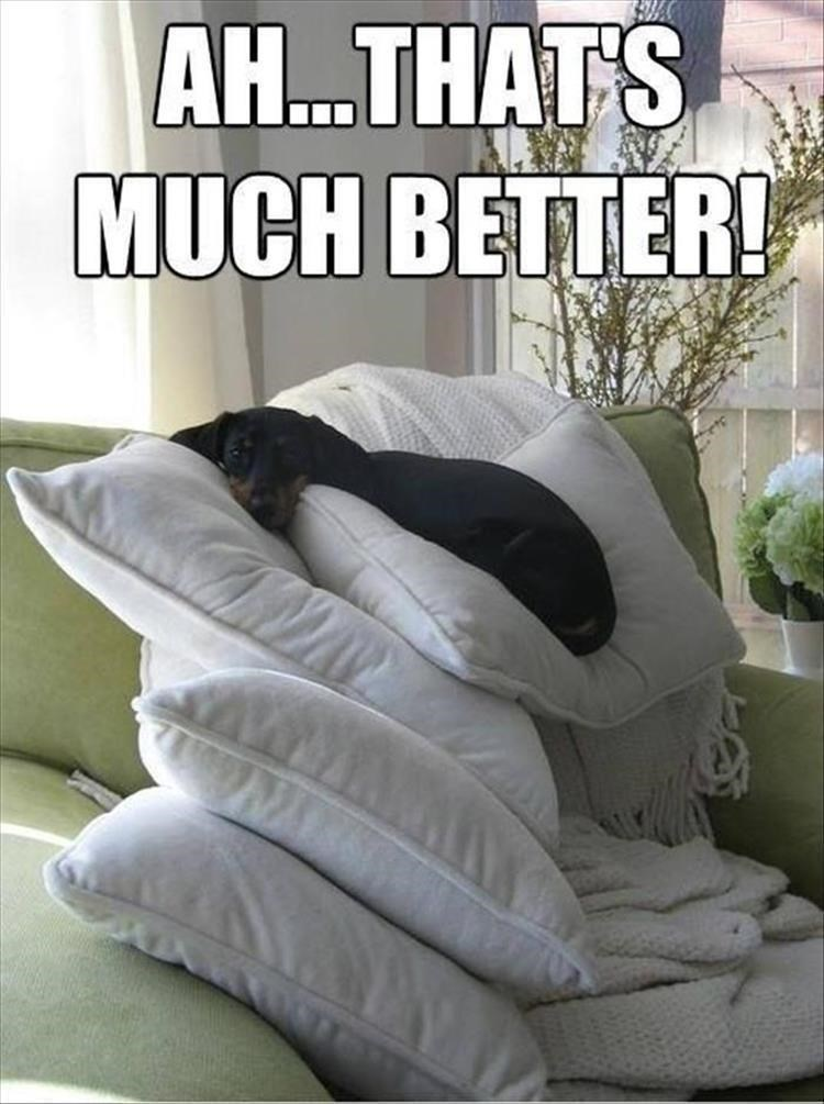 Bedding - AH...THATS MUCH BETTER!