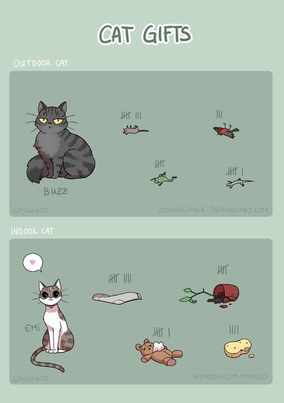 animal gifts - Text - CAT GIFTS OUTDOOR CAT Buzz 20MBIESMILE DEVIANTART COM OMIKIKO INDOOR CAT EMi PATREDN COM/MIKIKO OMIKIKO MAME
