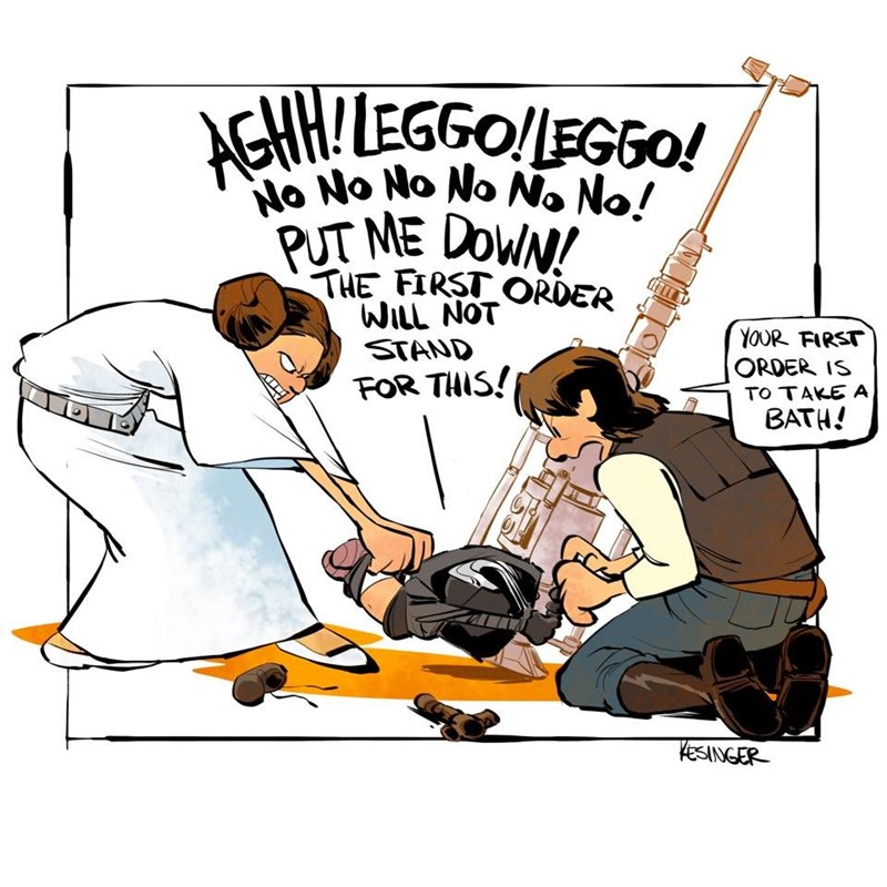 Cartoon - !LEGGO!EGGO! AGHH No No No No N. No! PUT ME DOWN! THE FIRST ORDER WILL NOT STAND YOUR FIRST ORDER IS FOR THIS! TO TAKE A BATH! KesINGER
