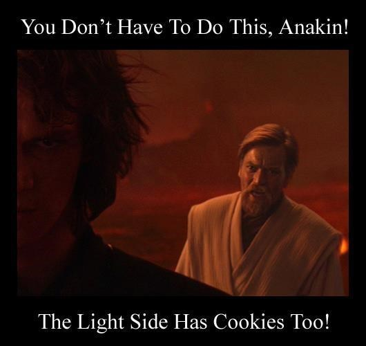 Text - You Don't Have To Do This, Anakin! The Light Side Has Cookies Too!
