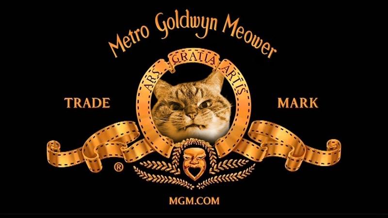 Text - Metro Golduyn Meower RATA TRADE MARK MGM.COM ARTIS