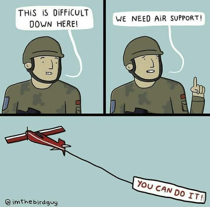 Cartoon - THIS iS DIFFICULT WE NEED AiR SUPPORT! DOWN HERE! YOU CAN DO IT! @imthebirdguy
