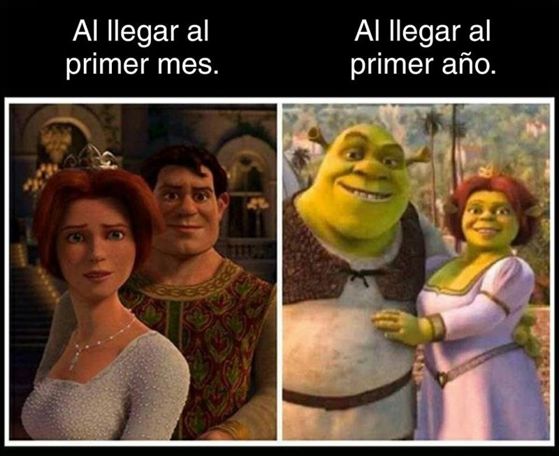 Cheezburger Image 9102393600