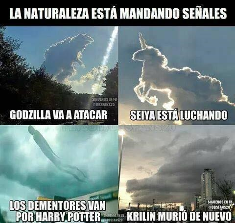 Cheezburger Image 9102395392