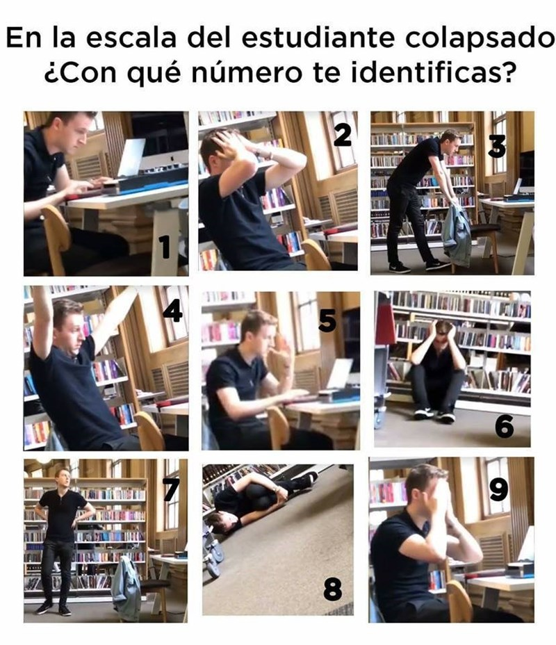 Cheezburger Image 9102396928