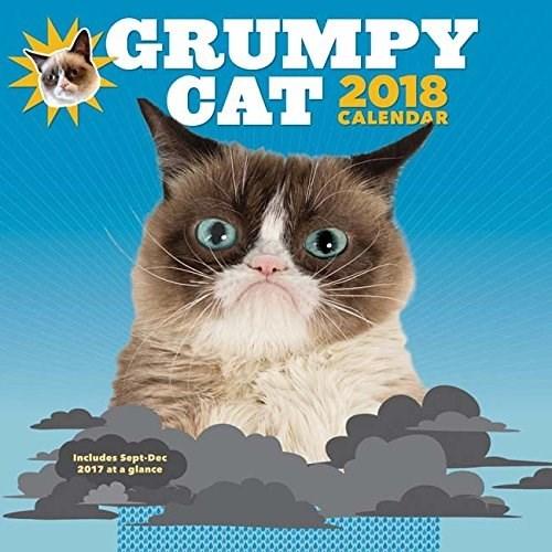 Cat - GRUMPY CAT 2018 CALENDAR Includes Sept-Dec 2017 at a glance