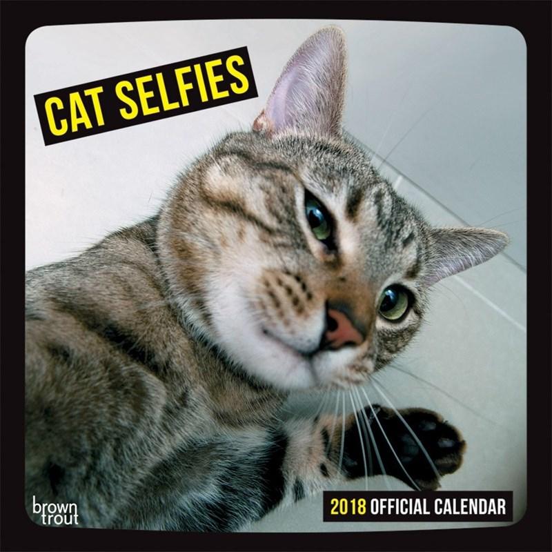 Cat - CAT SELFIES brown trout 2018 OFFICIAL CALENDAR