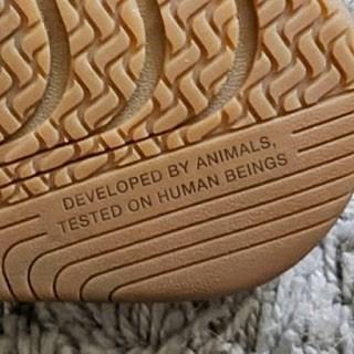 Cheezburger Image 9102867968