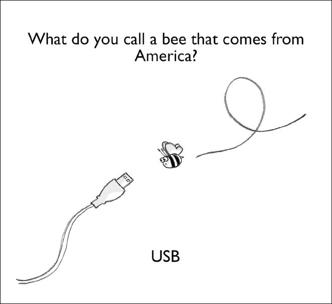 Text - What do you call a bee that comes from America? USB
